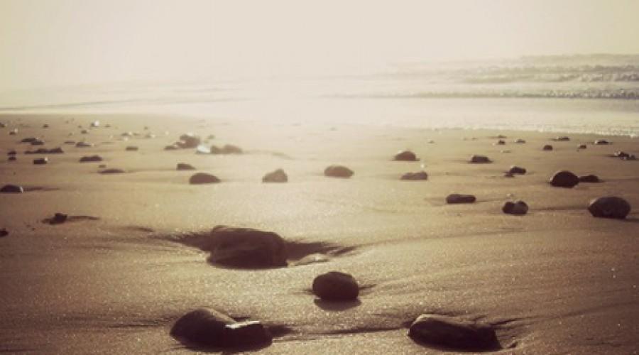 Exito…el camino lleno de piedras…