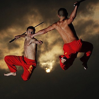 Especialistas artes marciales