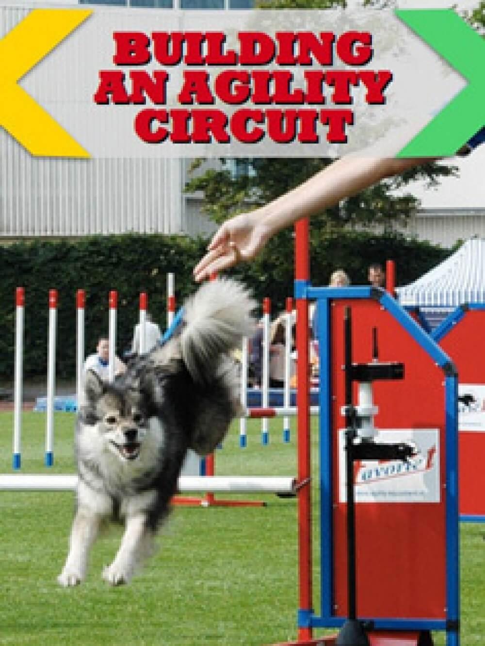 building_an_agility_circuit_vertical_web