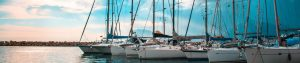 corporate sailing regatta