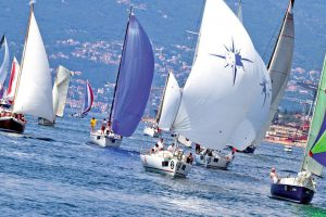 corporate sailing regatta